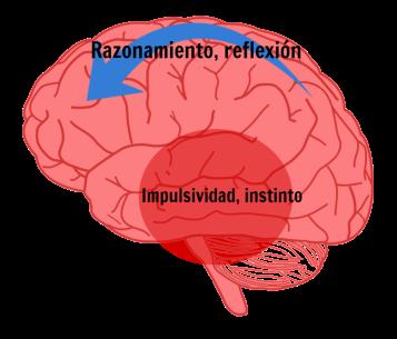 cerebro impulsivo comida basura chatarra