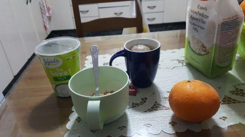 yogur natural con espelta hinchada con agave y coco infusion de canela lupulo y una naranja