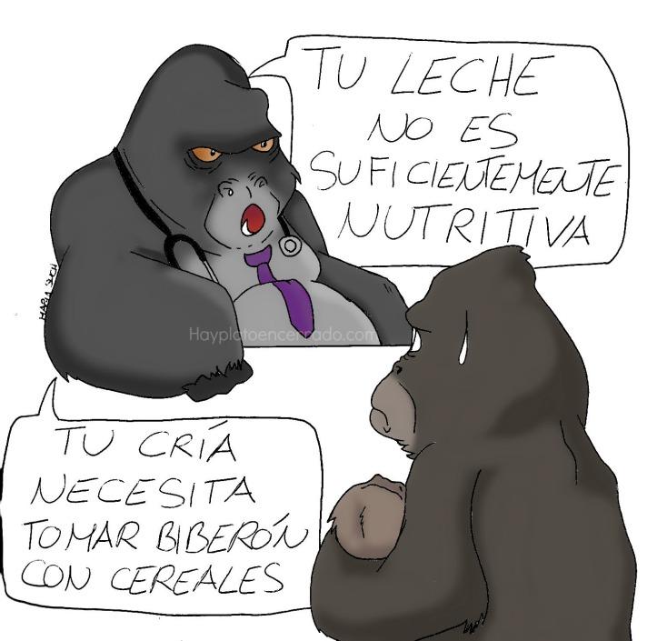 gorila lactancia materna viñeta